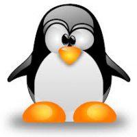web-linux